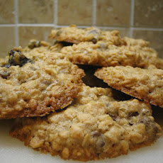 Superb Oatmeal Cookies