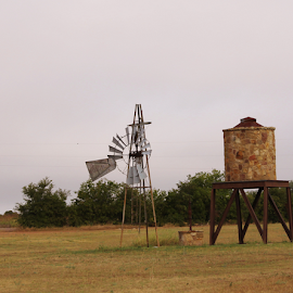 by K Dawn McDonald - Landscapes Prairies, Meadows & Fields