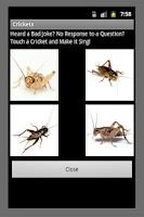 Screenshot of Bad Joke Crickets Sound
