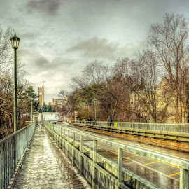 Bridge  by Jiabi Yang - City,  Street & Park  City Parks ( university, ontario canada, london, bridge, uwo )