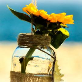 Beach through the vase. by Diane Davis - Wedding Other