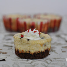 Peppermint Chocolate Chip Cheesecake Bites