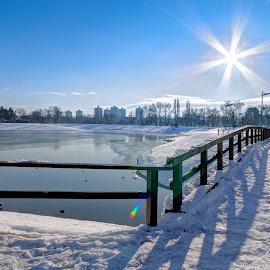 Winter sun by Bojan Bilas - City,  Street & Park  City Parks ( hdr, park, croatia, sunshine, zagreb, sun, city )
