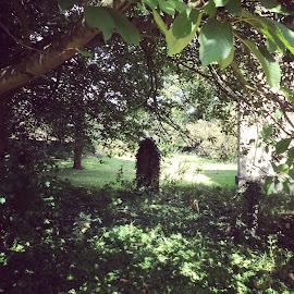 Churchyard  by Wendy Davey - Instagram & Mobile Instagram