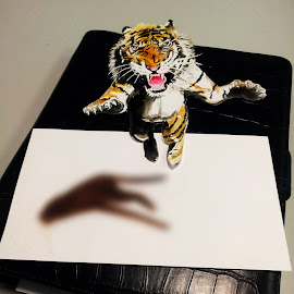 Got tiger on my desk by Alfonso Rahardja - Painting All Painting