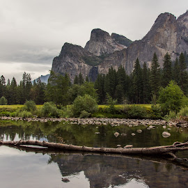 In the Valley by Tobias Weller - Landscapes Mountains & Hills ( water, reflection, yosemite, california, reflections, dark clouds, landscape, rocks, usa )