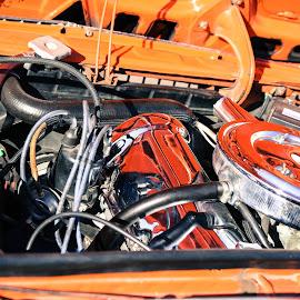 Engine of Lada Riva by Tataw Junior - Transportation Automobiles ( car, 1980, engine, lada, ussr )