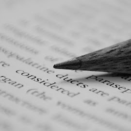 Untitled by Tushar Dudeja - Novices Only Objects & Still Life ( macro, monochrome, stilllife, objects, pencils )
