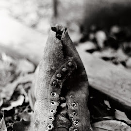 lost shoe by Cynthia Linderbeck - Novices Only Objects & Still Life (  )