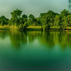 Stillness by Radu Eftimie - City,  Street & Park  City Parks ( bucharest, the youth park, trees, long exposure, lake, romania )
