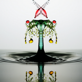 X by Muhammad Berkati - Abstract Water Drops & Splashes ( macro, splash, waterdrop, waterdrops )