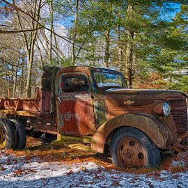 Rusting Chevy by Alan Roseman - Transportation Automobiles ( chevy truck, new england, truck, plymouth, old truck, work truck, decay, abandoned )