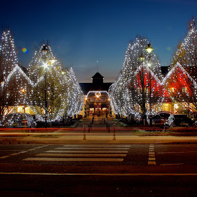 by Alex Chia - Public Holidays Christmas ( lights, christmas, light trails, trees, night, bicester )