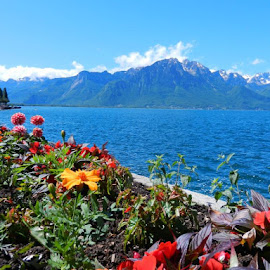 Montreux by Bernadette van Kesteren - Landscapes Travel