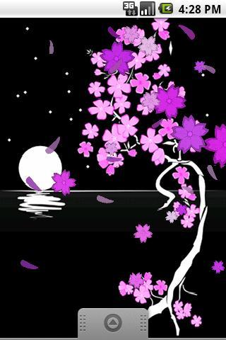 ACE: Sakura bloom