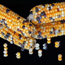 Maize1 by Asif Bora - Food & Drink Fruits & Vegetables