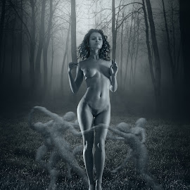 by Dmitry Laudin - Digital Art People ( forest )