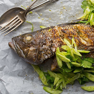 Grilled Black Sea Bass with Cucumber and Cilantro Salad