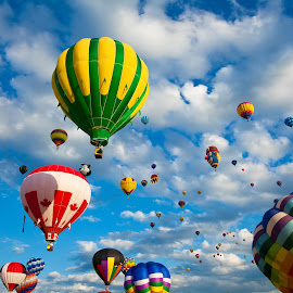 Vibrant Hot Air Balloons by Nicolas Raymond - Transportation Other ( clouds, festive, colorful, colors, round, transportation, vibrant, balloons, balloon, colours, colour, flying, flight, colourful, sky, color, fly, aircraft, hot, ballooning, cloudy, festival, air,  )