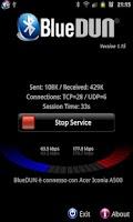 Screenshot of BlueVPN [DUN client] <ICS
