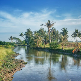 river by Faizal Ramli - Landscapes Prairies, Meadows & Fields ( sky, nature, blue, green, cow, malaysia, landscape, asian, river )