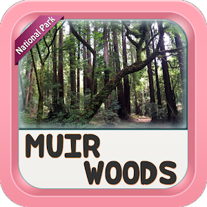 Muir Woods National Monument For PC / Windows 7/8/10 / Mac – Free Download