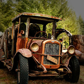 Logging Truck by Gary Winterholler - Transportation Automobiles (  )