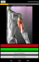 Screenshot of Anatomy Quiz Pro