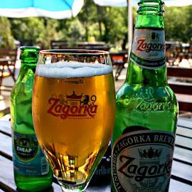 Zagorka by Glyn Thomas Jones - Food & Drink Alcohol & Drinks ( beer, zagorka, drinking, bar, bulgarian, restaurants, drinks, bulgaria )
