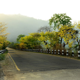 The Beaauty of Nature by Pallav Pranjal Sarma - City,  Street & Park  Street Scenes