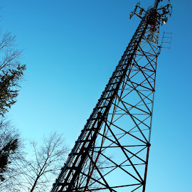 Cell Tower by Ernie Kasper - Buildings & Architecture Architectural Detail ( structure, tower, metal, sunset, cell, satelight, dishes, trees, forest, sunlight )
