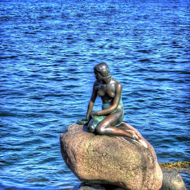 The Little Mermaid- Copenhagen by Katarina Himes - Buildings & Architecture Statues & Monuments (  )