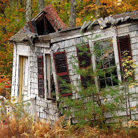 Cottage Decay by Robin Amaral - Buildings & Architecture Decaying & Abandoned ( fence, structure, autumn, cottage, door, shingles, shutters, new hampshire, rotting, abandoned, decay,  )