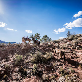 Ridge Riders by Andrew Hale - Landscapes Deserts ( #horseback #sunflare, #ridge #arizonastrip #arizonadesert # )