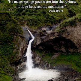 He makes springs pour water into the ravines by Steven Faucette - Typography Captioned Photos ( psalms, mountains, ecuador, waterfall, scripture )