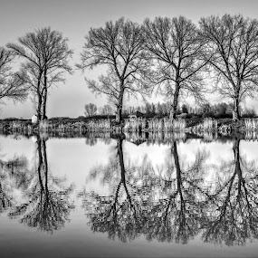 Reflection on the magical lake.. by Željko Salai - Black & White Landscapes
