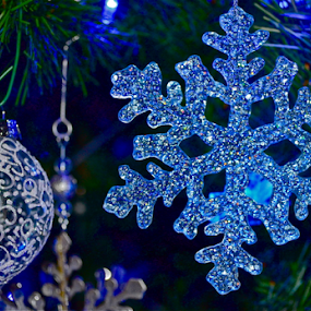 by Deena Zeidler - Public Holidays Christmas (  )