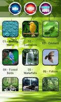 Screenshot of Nature Sounds Ringtones