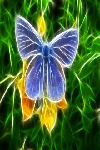 可愛的蝴蝶12