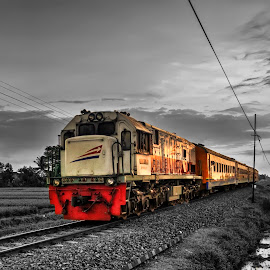 KA Pandnwangi Selective Color by Randi Pratama M - Transportation Trains ( indonesia, train, selective color, pwc )