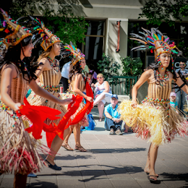 30th Annual Caribbean Arts Festival by Joseph Law - News & Events World Events ( parade, dancing, caribbean art festival, anual, art show, people, 30 th, world even celebration )
