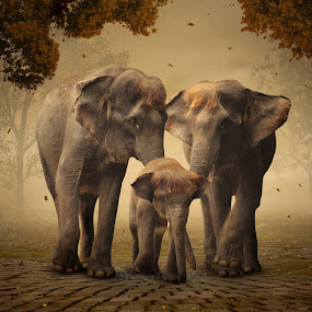 Happy Family by Alfa Oldicius - Digital Art Animals