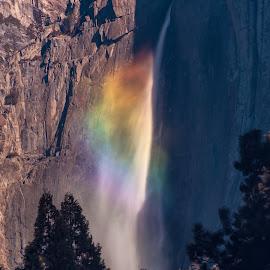 Rainbow at Yosemite Falls by Kevin Brown - Landscapes Travel ( california, yosemite falls, yosemite national park, morning, rainbow, spring )