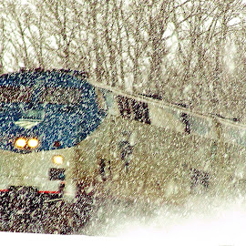Ridin' Out the Storm by Kim Cook - Transportation Trains