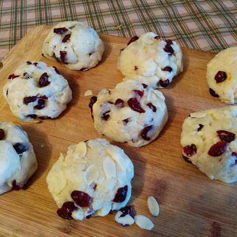 Easy Peasy Cranberry Orange Biscuits (vegan)
