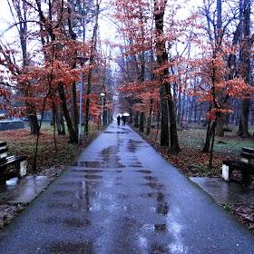 šetnja na kiši..s.jpg