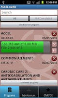 Screenshot of ACCEL Audio