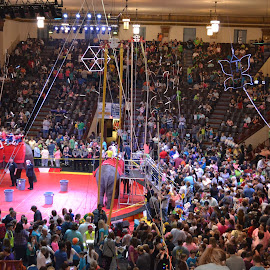 At the circus by Nicole Schoch - People Musicians & Entertainers ( people, crowd, humanity, society )