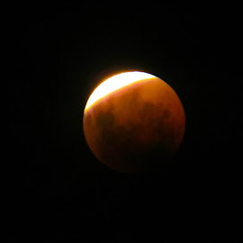 bloodmoon eclipse by Teodora Motateanu - News & Events World Events