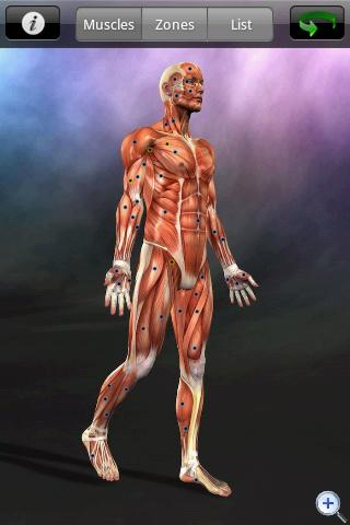 Muscle Trigger Point Anatomy APK - Android APK Download